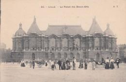 Cp , 59 , LILLE , Le Palais Des Beaux-Arts - Lille