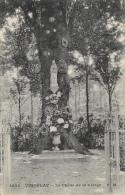 Viroflay - Le Chêne De La Vierge - Edition E. Malcuit - Carte N°3046 Non Circulée - Árboles
