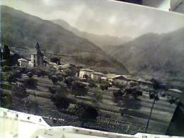 CAMPOMAGGIORE PAESE TRENTO SCORCIO   VB1955  FG8819 RRR - Trento