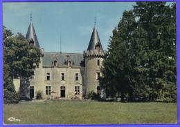 Carte Postale 71. Chagny  Hostellerie Bellecroix Le Chateau Trés Beau Plan - Chagny