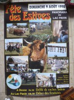 AFFICHE DE 1998 - FETE  DES  ESTIVES - BESSE - LAC PAVIN - Affiches