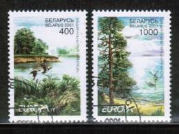 CEPT 2001 BY MI 409-10 USED BELARUS - Europa-CEPT