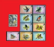Songbirds  Birds / Oiseaux  Passeri  Oscines Lesotho 1988 - Iraq Irak 1976  MNH ** - Passereaux