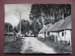 CPA CPSM PHOTO 28 CHUISNES Les Tilleuls RARE PLAN Années 1960 70 ? Canton ILLIERS COMBRAY - Non Classés