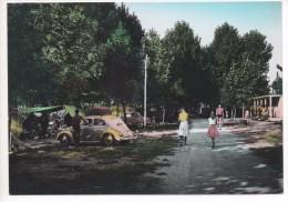 37014  GASPARINA  -  CAMPEGGIO TURISTICO     ~ 1960 - Italia