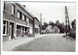 Geel - Ten Aart - Aartsteenweg - Geel
