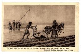 EGYPTE - LA VIE EGYPTIENNE - 12 - Le Labourage Après Le Retrait De La Crue - AGRICULTURE - Ed. Fernand Nathan, Paris - Egypte