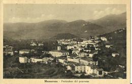 Massarosa (Lucca) Panorama, General View, Vue Generale, Gesamtansicht - Lucca