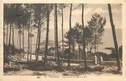 TC-16- 799   : TREBOUL - Tréboul