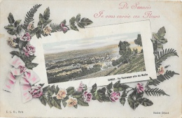 De Sannois, Je Vous Envoie Ces Fleurs - Une Vue Panoramique Prise Des Moulins - Carte E.L.D. Colorisée - Souvenir De...
