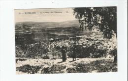 BETHLEEM 25 LE CHAMP DES PASTEURS - Palästina