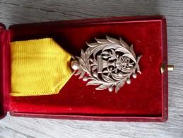 Insigne Décoration Ordre Royal Du Muniseraphon Palmes De Chevalier , Cambodge Rare - France