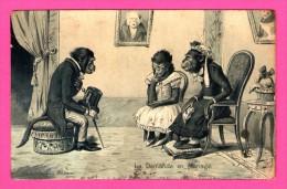 Anthropomorphisme - Carte Gaufrée - Relief - La Demande En Mariage - Singes - K.F. - 1903 - Monos