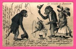 Fantaisie - Anthropomorphisme - Carte Gaufrée - Relief - La Rencontre En Promenade - Singes - Chapeaux à Plumes - 1905 - Monos