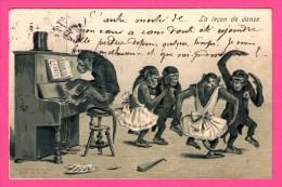 Fantaisie - Anthropomorphisme - Carte Gaufrée - Relief - Singes - La Leçon De Danse - K.F. - 1903 - Monos