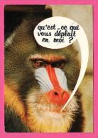 """Humour - Face De Singe - """" Qu'est-ce Qui Vous Déplait En Moi ? """" - Cliché. PALNIC - CIM - S.P.A.D.E.M. - 1972 - Monos"""