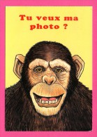 Carte Humour - Singe - Tu Veux Ma Photo ? - Dessin GILBERT ANDRÉ - LYNA - Monos