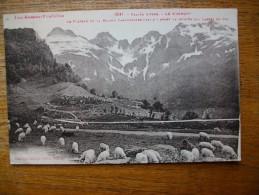 """Vallée D'aspe , Le Somport , Le Plateau De La Maison Cantonnière """""""" Carte Animée Troupeau De Moutons """" - France"""