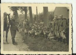 A500  --  DEUTSCHLAND  -  WW2  --  Waffen Ss ORIGINAL PHOTO   --  SOLDATEN,  HORSE  --    8,5 Cm  X 6 Cm - 1939-45