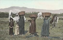 Egypte - Filles Arabes Dans La Moisson- Scan Recto-verso - Egitto