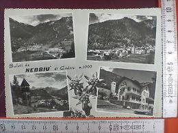 Cartolina 2772 Saluti Da Nebbiù Di Cadore, Belluno, Viaggiata - Ohne Zuordnung