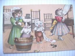Chats Cats Katzen Poezen 1906 - Katzen