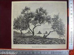 Incisione Del 1892 Sulla Strada Di Acireale, Catania - Ohne Zuordnung