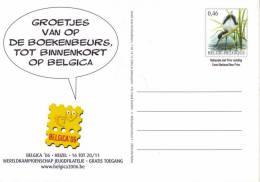 Belgie - Briefkaart - Kluut (Buzin) - Boekenbeurs / Belgica - 1985-.. Oiseaux (Buzin)