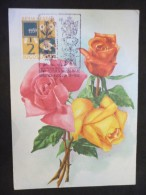 Carte Postale  Roses 23/09/1962 - 1945-1992 République Fédérative Populaire De Yougoslavie