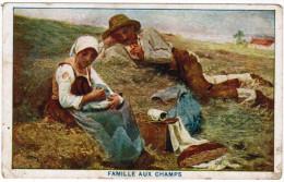 Famille Aux Champs, Margarine Merveille  (pk27548) - Cultivation