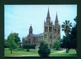 AUSTRALIA  -  Adelaide  Saint Peter's Cathedral  Unused Postcard - Adelaide