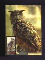 Bubo Bubo Birds Oiseaux Faune Animals BULGARIA 2009 Maximum Card Mc521 - Bulgaria