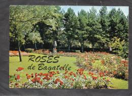 62 - BAGATELLE - Parc D'attractions Entre Berck Et Merlimont - Ses Roses - France