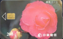Taiwan Telephone IC Card Camellia (I) Flower Flora - Taiwan (Formosa)