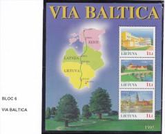 LITUANIE 1996  BLOC 6 DESCRIPTIF SUR LE SCAN MNH - Lithuania