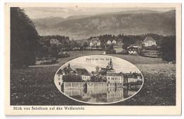 SOLOTHURN: 2-Bild-AK Mit Weissenstein ~1920 - SO Soleure