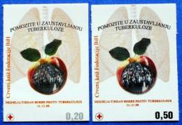 BOSNIA AND HERZEGOVINA BIH FEDERATION HB MOSTAR RED CROSS TBC TUBERCULOSIS 2007 STICKY LABEL CHARITY STAMPS - MNH - Bosnia Erzegovina