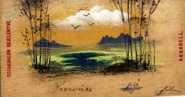 AK Materialkarten  POSTKARTEN, Die Gereist Sind Und Aus Holz Gebaut HUNGARY UNGARN ANSICHTSKARTE 1903 - Sonstige