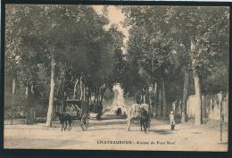 CHATEAUROUX - Avenue Du Pont Neuf - Chateauroux