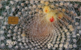 Taiwan Telephone IC Card IC9025 Cactus (I) Flora Flower - Taiwan (Formosa)