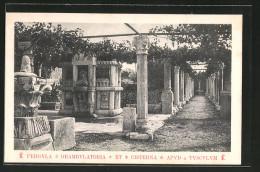 CPA Salona, Pergula Deambulatoria Et Cisterna Apud Tusculum - Croatie