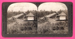 Keystone View Compagny - Stéréoscopique - Photo - Scene Above Bridge - Cape To Cairo Railway - Zambezi River - Rhodésia - Simbabwe
