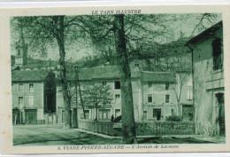 81  VIANE - PIERRE SEGADE         L'Arrivée De Lacaune - Altri Comuni
