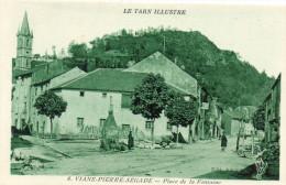81  VIANE - PIERRE SEGADE       Place De La Fontaine - Altri Comuni