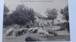 IS EN BASSIGNY  Entrée Du Village Rare - France