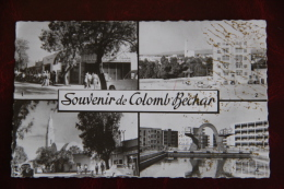 COLOMB BECHAR - Souvenir - Bechar (Colomb Béchar)
