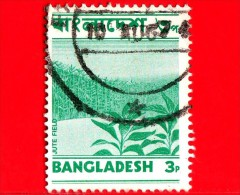 BANGLADESH - Usato - 1973 - Agricoltura - Iuta - Jute Field - 3 - Bangladesh