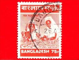 BANGLADESH - Usato - 1973 - Agricoltura - Raccolti - Tè - Tea Picking - 75 - Bangladesh