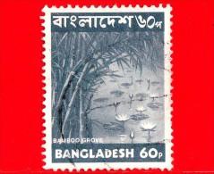 BANGLADESH - Usato - 1973 - Fiori  Piante - Bamboo Grove - Waterlilies - 60 - Bangladesh