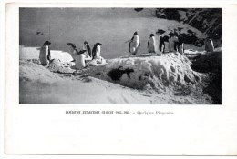 CPA POLAIRE ANTARCTIQUE Charcot - TAAF : Franse Zuidpoolgewesten